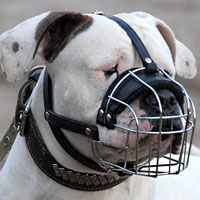 Wire Basket Dog Muzzle for American Bulldog