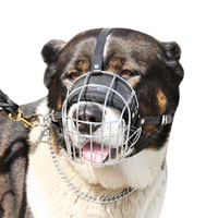 Wire Basket Dog Muzzle for Caucasian Shepherd